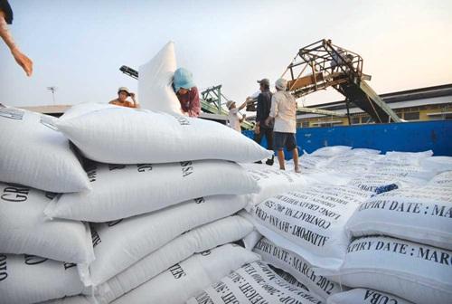 Xuất khẩu gạo 7 tháng đầu năm tiếp tục giảm so với cùng kỳ năm ngoái.